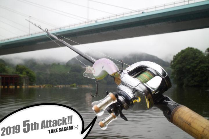 ブラックバス釣り in 相模湖 5回目【2019:梅雨空の下での初バス系】