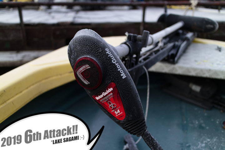 ブラックバス釣り in 相模湖 6回目【2019:らしい釣り納め】